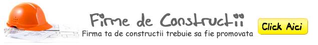 Firme de constructii